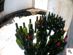 A wine bottle graveyard